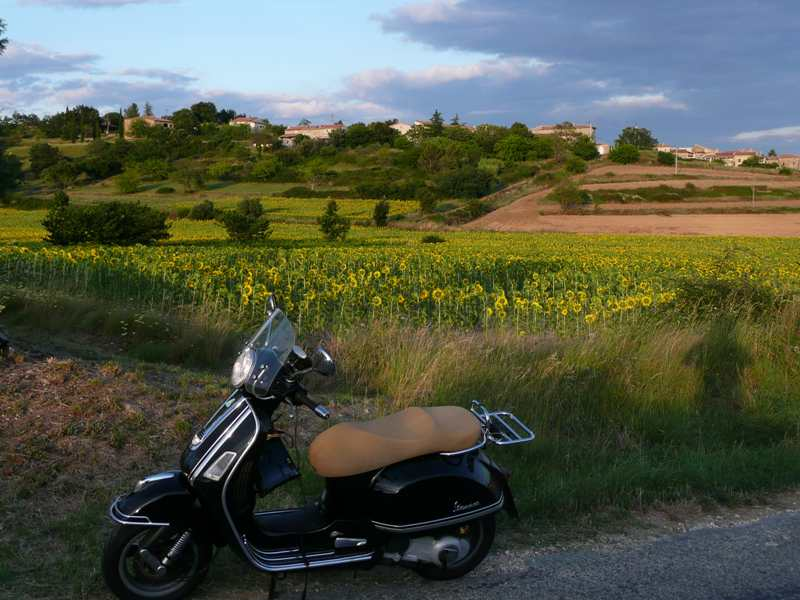 south of France12.jpg