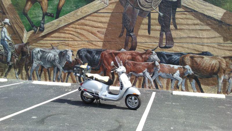 vespa mural cows 2.jpg