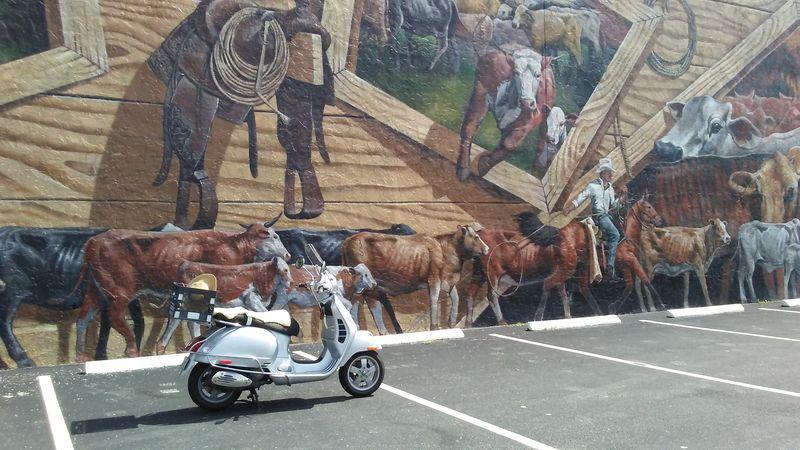 vespa mural cows.jpg