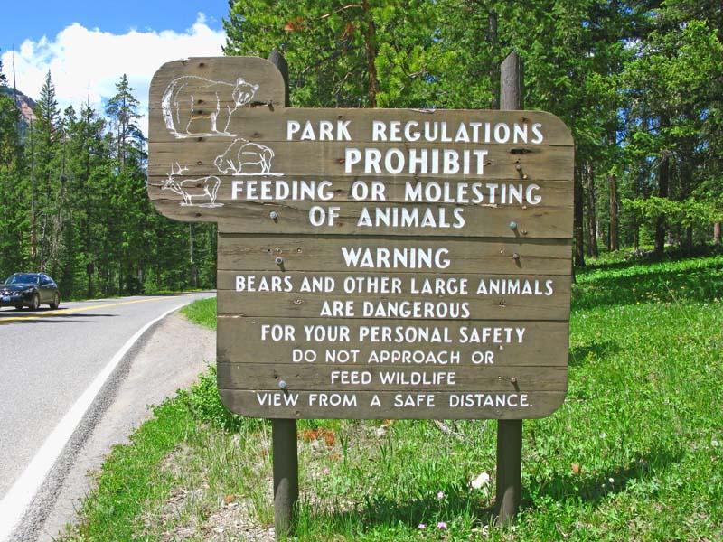 Yellowstone_3.jpg