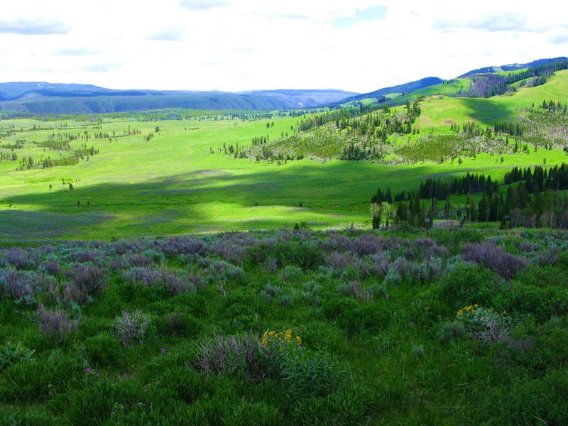 Yellowstone_6.jpg