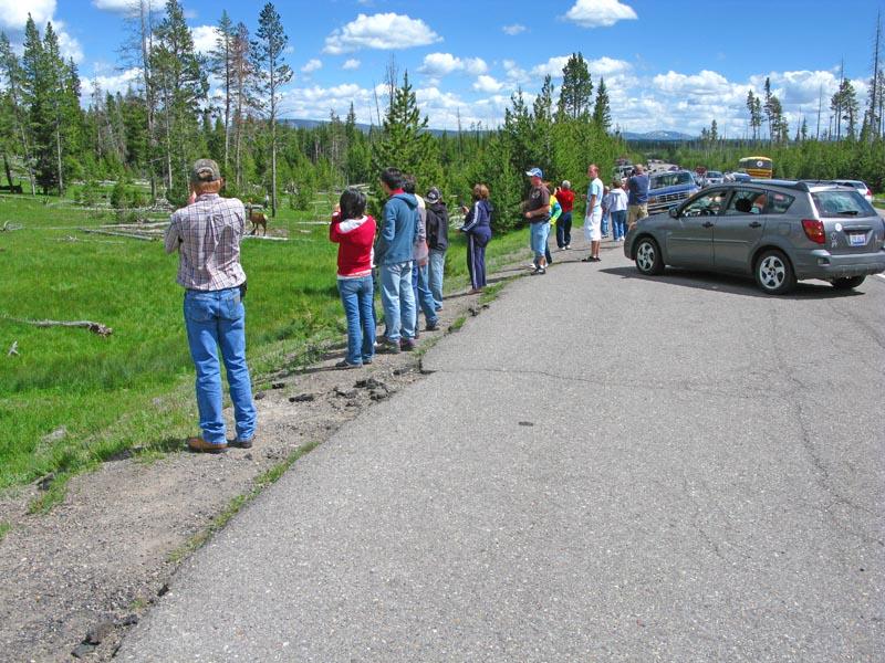 Yellowstone_8.jpg