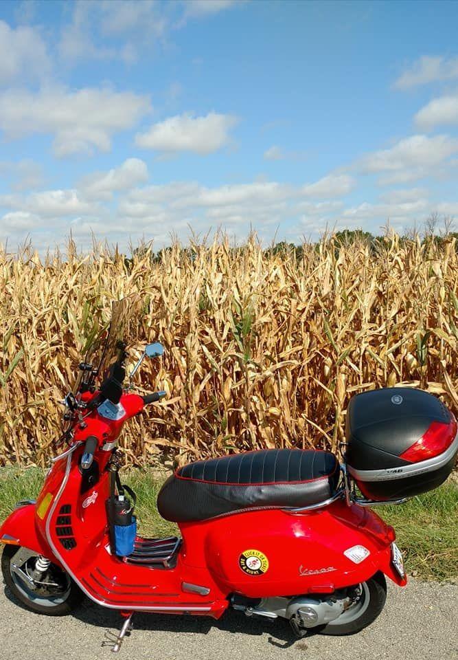 7 bridges corn field.jpg
