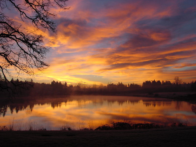 beautiful mornin copy.jpg