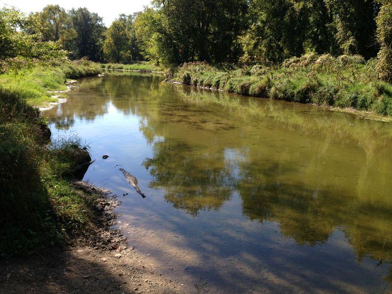 beaver_river.jpg