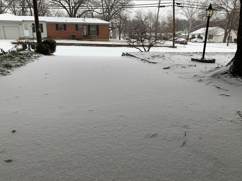 Snowpocalypse2021 - Fresh Snow.JPEG