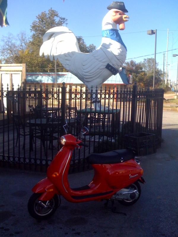 scooter chicken.jpg