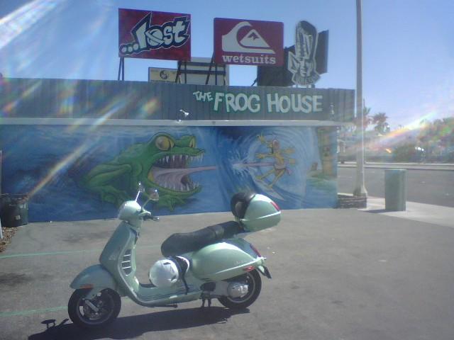 Frog house.jpg
