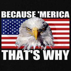 d36f3cfe04652c9990dc0dcf6c2d39c5--american-pride-american-girl.jpg